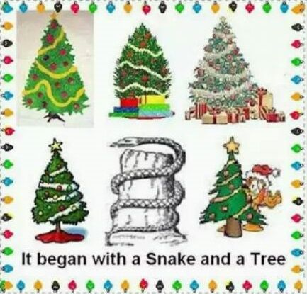 the bottom line concerning christmas trees is that they are not a biblical symbol of the birth of christ and are very clearly a wicked symbol contrary to - Origin Of Christmas Tree